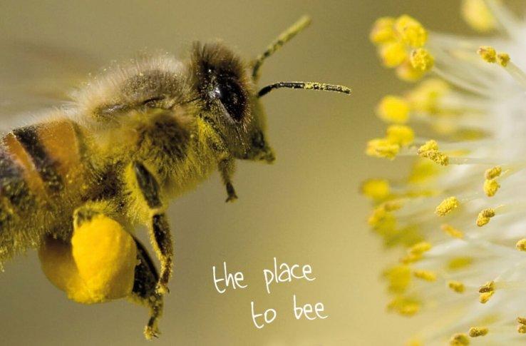 Bijenpark Terschelling